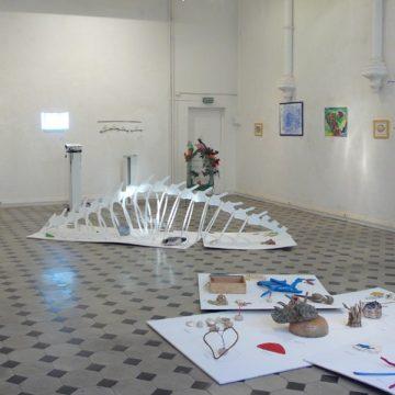 D'un Regard l'Autre «un cabinet de curiosités» 8ème Festival Art & Exception