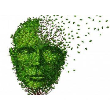 Alzheimer, quoi de neuf?