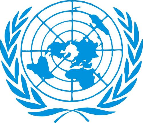 Le Conseil des Droits de l'homme de l'ONU