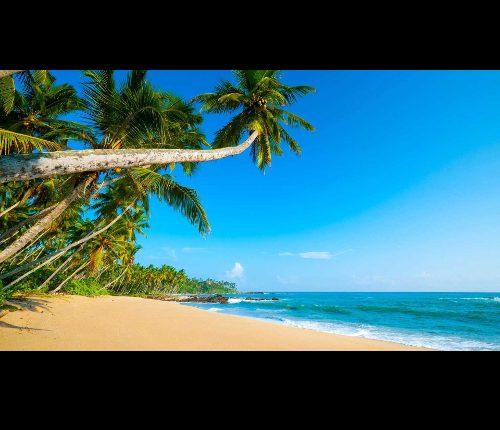 Un archipel méconnu : Sao Tome e Principe