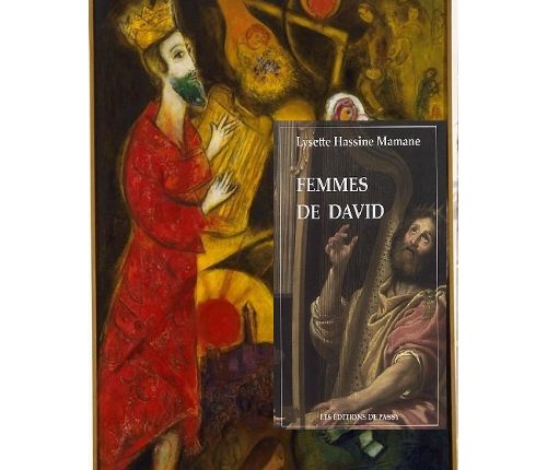 Les femmes de David, sacrées femmes !