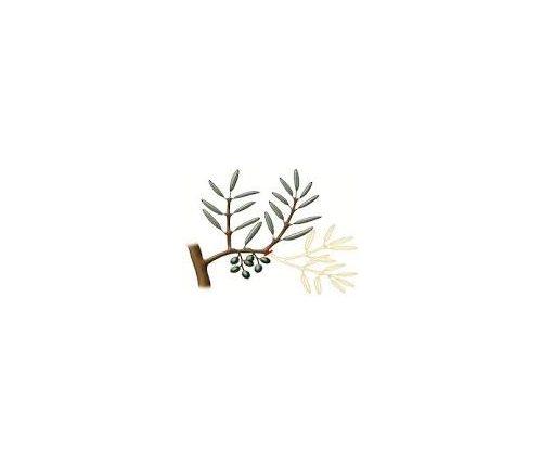 Autour de l'olivier