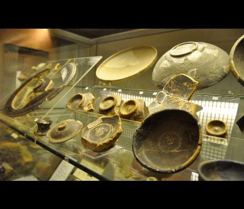 RDV cévenol au musée Le Colombier à Alès