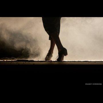 30ème Festival Flamenco » Sur le vif «