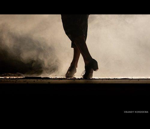 30ème Festival Flamenco «Sur le vif»