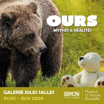 Exposition : l'Ours, mythes et réalités