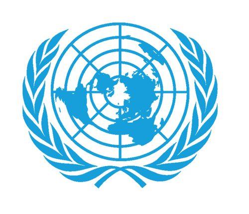 Les juridictions de l'ONU