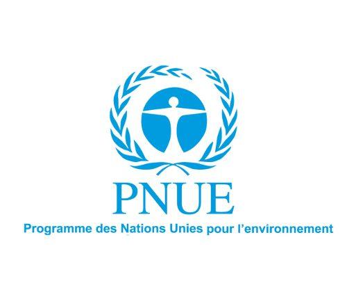 Nations Unies et environnement (suite)