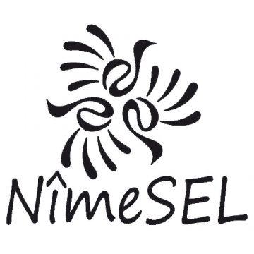 Système d'échange local : NimeSel