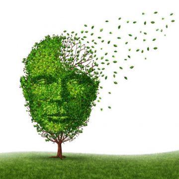 Alzheimer, changer de regard