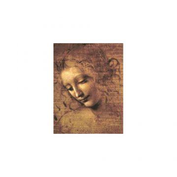 Léonard de Vinci par écrit (1)