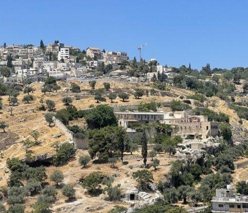 Accompagner les victimes en Palestine